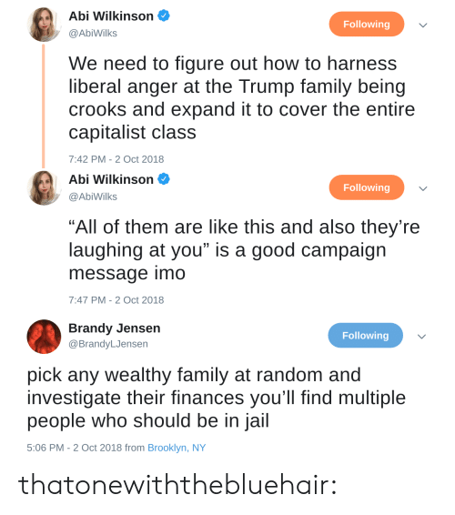 """investigate: Abi Wilkinson  @AbiWilks  Following  We need to figure out how to harness  liberal anger at the Trump family being  crooks and expand it to cover the entire  capitalist class  7:42 PM-2 Oct 2018   Abi Wilkinson  Following  @AbiWilks  """"All of them are like this and also they're  laughing at you"""" is a good campaign  message imo  7:47 PM-2 Oct 2018   Brandy Jensen  @BrandyLJensen  Following  pick any wealthy family at random and  investigate their finances you'll find multiple  people who should be in jail  5:06 PM - 2 Oct 2018 from Brooklyn, NY thatonewiththebluehair:"""