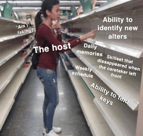 host: Ability to  identify new  alters  'Am I  faking??  Daily  memories Skillset that  The host  dissappeared when  the caretaker left  Weekly  front  schedule  Ability to find  keys