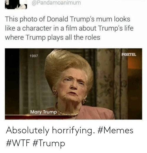 WTF: Absolutely horrifying. #Memes #WTF #Trump