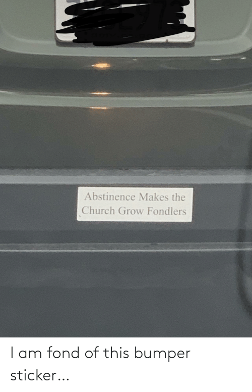 Church: Abstinence Makes the  Church Grow Fondlers I am fond of this bumper sticker…