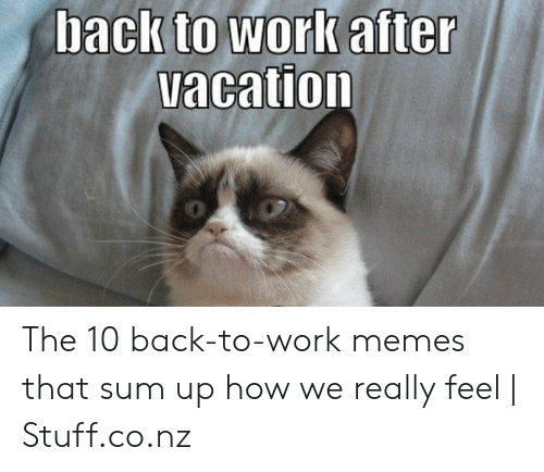 i miss you meme: acation The 10 back-to-work memes that sum up how we really feel   Stuff.co.nz