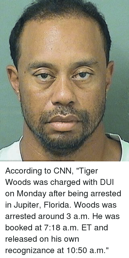 according to cnn tiger woods was charged with dui on 21808908 according to cnn tiger woods was charged with dui on monday after