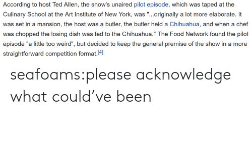 "Straightforward: According to host Ted Allen, the show's unaired pilot episode, which was taped at the  Culinary School at e Ari Insic of Now York, .originally a lot more elaborat l  was set in a mansion, the host was a butler, the butler held a Chihuahua, and when a chef  was chopped the losing dish was fed to the Chihuahua."" The Food Network found the pilot  episode ""a little too weird"", but decided to keep the general premise of the show in a more  straightforward competition format.4 seafoams:please acknowledge what could've been"