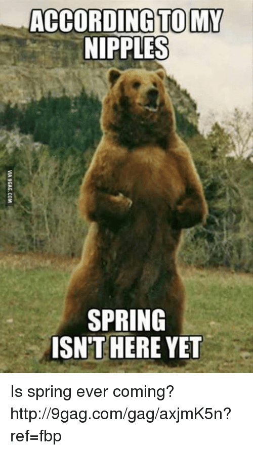 Dank, 🤖, and Ref: ACCORDING TO MY  NIPPLES  SPRING  ISN'T HERE YET Is spring ever coming? http://9gag.com/gag/axjmK5n?ref=fbp