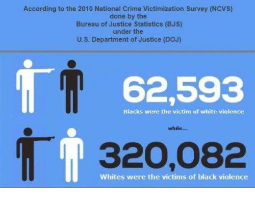 according to the 2010 national crime victimization survey ncvs done by the bureau of justice. Black Bedroom Furniture Sets. Home Design Ideas