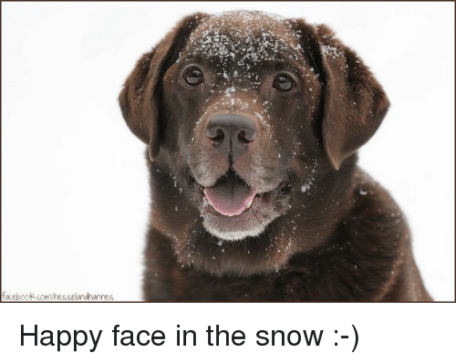 happy face: acebook.com/resselandhannes Happy face in the snow :-)