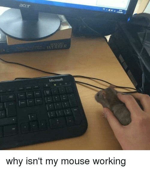 Mouse, Working, and Acer: acer  WERBER  tMi why isn't my mouse working