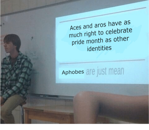 aces: Aces and aros have as  much right to celebrate  pride month as other  identities  are just mean  Aphobes