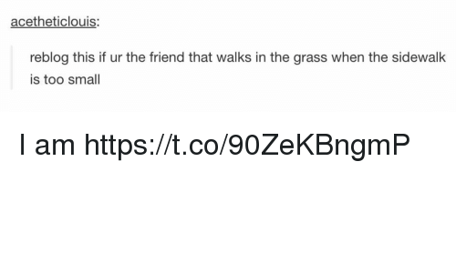 Memes, 🤖, and Friend: acetheticlouis:  reblog this if ur the friend that walks in the grass when the sidewalk  is too small I am https://t.co/90ZeKBngmP