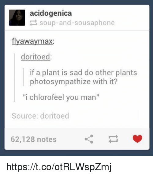 """Sad, Acid, and Source: acid ogenica  soup-and-sousaphone  fly away max  doritoed  if a plant is sad do other plants  photosympathize with it?  """"i chlorofeel you man""""  Source: doritoed  62,128 notes https://t.co/otRLWspZmj"""