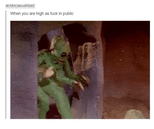 You Are High: acidocasualidad:  When you are high as fuck in public