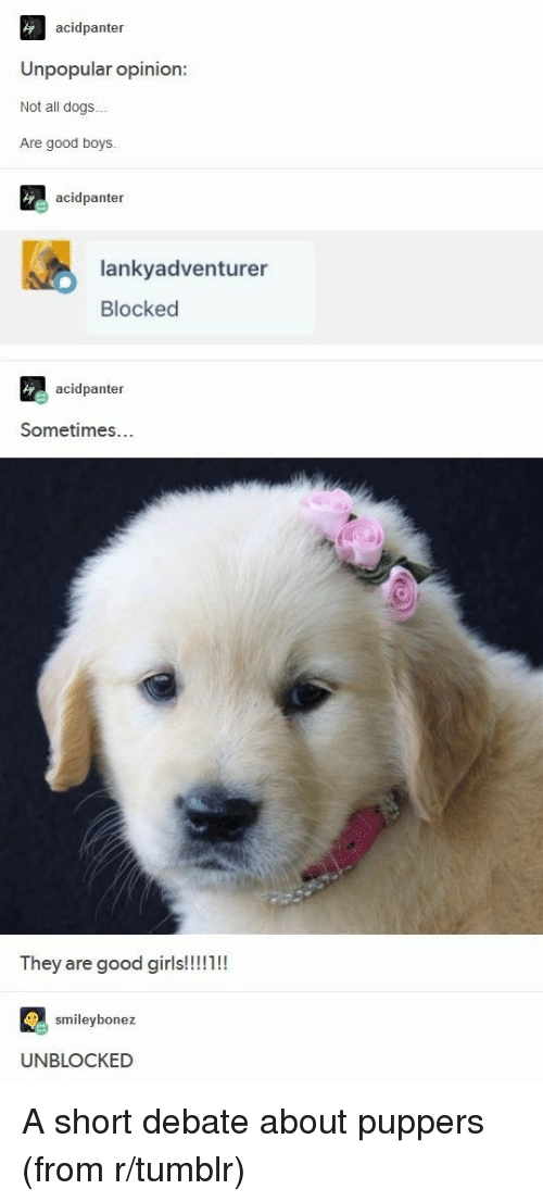Unblocked: acidpanter  Unpopular opinion:  Not all dogs..  Are good boys.  acidpanter  lankyadventurer  Blocked  acidpanter  Sometimes...  ey are good giris  smileybonez  UNBLOCKED <p>A short debate about puppers (from r/tumblr)</p>