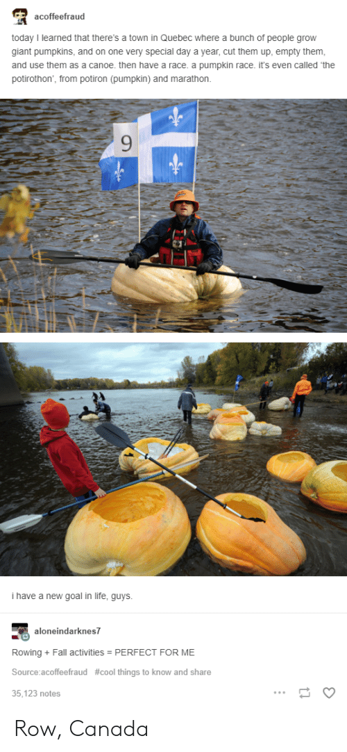canoe: acoffeefraud  today I learned that there's a town in Quebec where a bunch of people grow  giant pumpkins, and on one very special day a year, cut them up, empty them  and use them as a canoe. then have a race. a pumpkin race. it's even called 'the  potirothon, from potiron (pumpkin) and marathon.  9  i have a new goal in life, guys  neindarknes7  Rowing + Fall activities PERFECT FOR ME  Source:acoffeefraud #cool things to know and share  35,123 notes Row, Canada