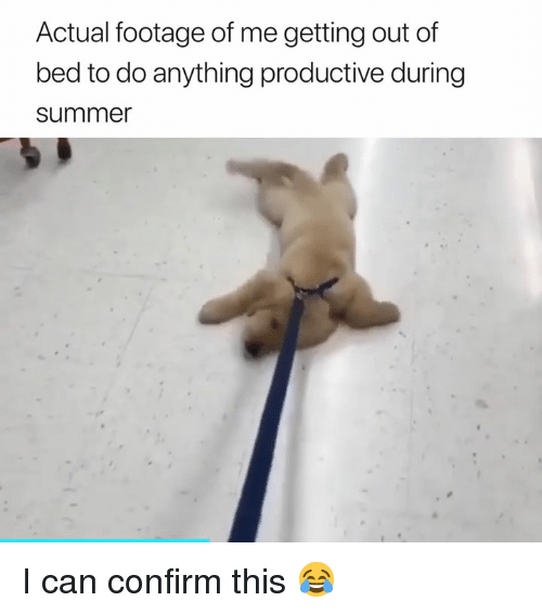 getting out of bed: Actual footage of me getting out of  bed to do anything productive during  summe I can confirm this 😂