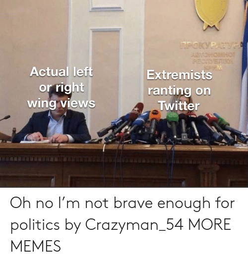 ranting: Actual lett  or right  wingViewS  Extremists  ranting on  A Twitter Oh no I'm not brave enough for politics by Crazyman_54 MORE MEMES
