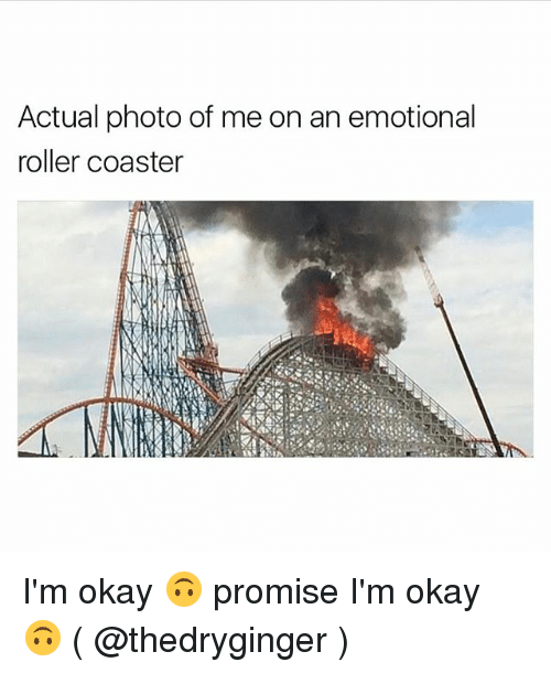 roller coasters: Actual photo of me on an emotional  roller coaster I'm okay 🙃 promise I'm okay 🙃 ( @thedryginger )