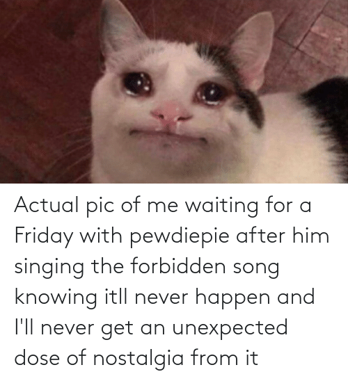 dose: Actual pic of me waiting for a Friday with pewdiepie after him singing the forbidden song knowing itll never happen and I'll never get an unexpected dose of nostalgia from it