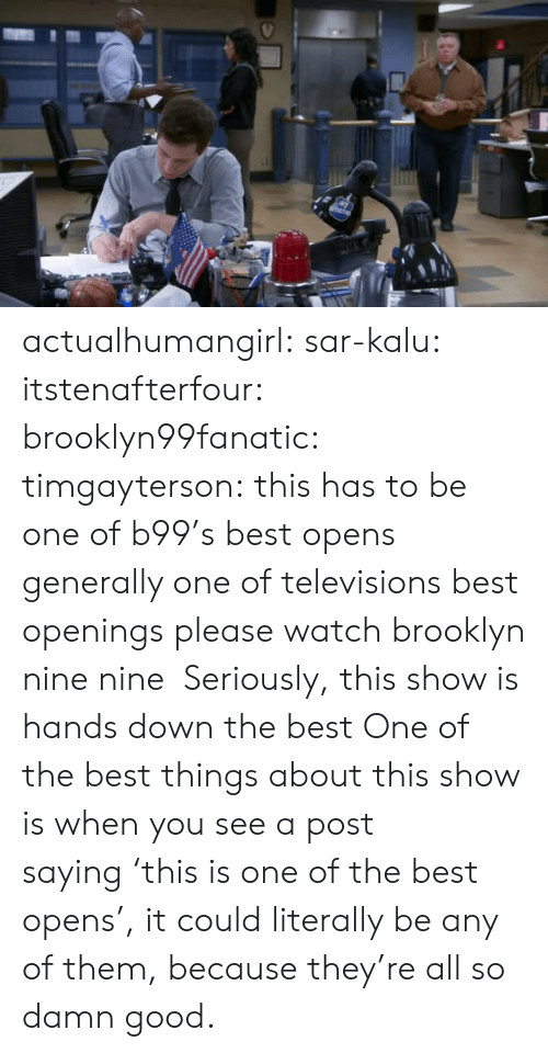 Brooklyn: actualhumangirl: sar-kalu:  itstenafterfour:  brooklyn99fanatic:  timgayterson: this has to be one of b99's best opens  generally one of televisions best openings  please watch brooklyn nine nine    Seriously, this show is hands down the best  One of the best things about this show is when you see a post saying 'this is one of the best opens', it could literally be any of them, because they're all so damn good.
