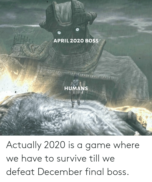 Final boss: Actually 2020 is a game where we have to survive till we defeat December final boss.