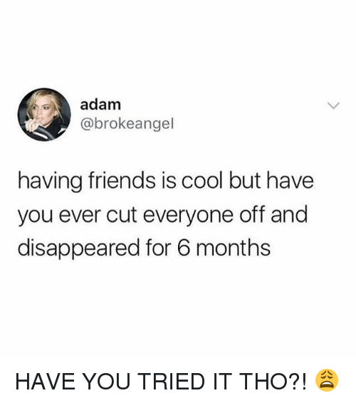 you tried it: adam  @brokeangel  having friends is cool but have  you ever cut everyone off and  disappeared for 6 months HAVE YOU TRIED IT THO?! 😩