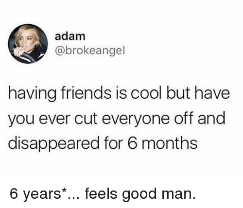 Friends, Memes, and Cool: adam  @brokeangel  having friends is cool but have  you ever cut everyone off and  disappeared for 6 months 6 years*... feels good man.