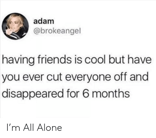 disappeared: adam  @brokeangel  having friends is cool but have  you ever cut everyone off and  disappeared for 6 months I'm All Alone