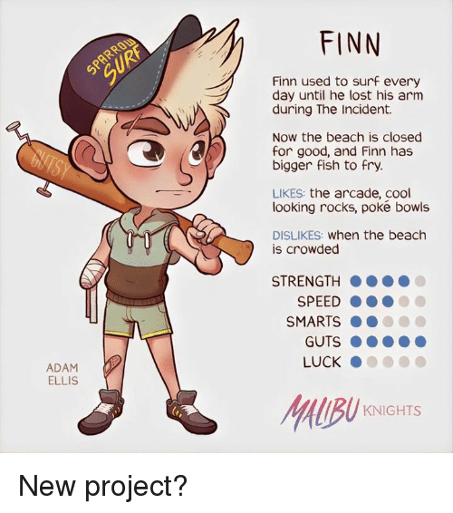 Finn, Memes, and Beach: ADAM  ELLIS  FINN  Finn used to surf every  day until he lost his arm  during The Incident.  Now the beach is closed  for good, and Finn has  bigger fish to fry.  LIKES  the arcade, cool  looking rocks, poke bowls  DISLIKES: when the beach  s crowded  STRENGTH  SPEED  SMARTS  LUCK  HIBU  KNIGHTS New project?