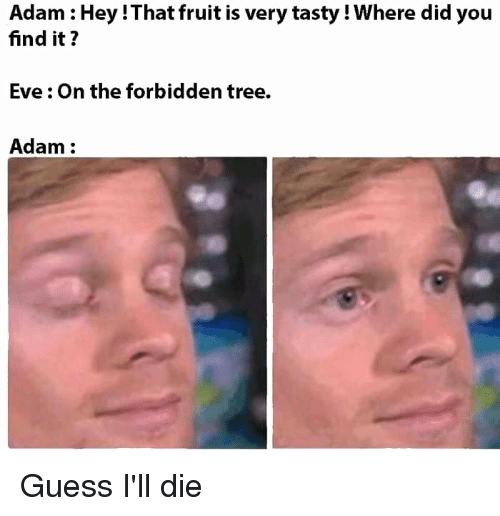 Guess, Tree, and Dank Christian: Adam : Hey !That fruit is very tasty! Where did you  find it?  Eve: On the forbidden tree.  Adam: Guess I'll die