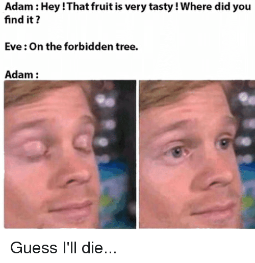 Funny, Guess, and Tree: Adam: Hey !That fruit is very tasty! Where did you  find it?  Eve: On the forbidden tree.  Adam: