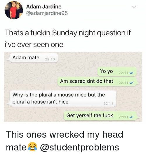 Head, Yo, and Fuck: Adam Jardine  @adamjardine95  Thats a fuckin Sunday night questionitf  i've ever seen one  Adam mate 22:10  Yo yo  Oyo 22:11  Am scared dnt do that 22:1l  Why is the plural a mouse mice but the  plural a house isn't hice  22:11  Get yerself tae fuck 2211 This ones wrecked my head mate😂 @studentproblems