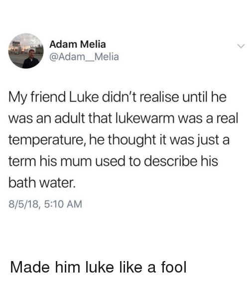 Bath Water: Adam Melia  @Adam_Melia  My friend Luke didn't realise until he  was an adult that lukewarm was a real  temperature, he thought it was just a  term his mum used to describe his  bath water.  8/5/18, 5:10 AM Made him luke like a fool