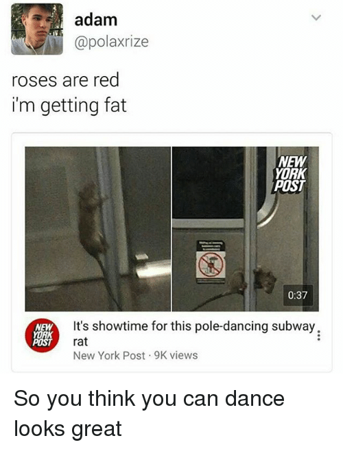 pole dancing: adam  @polarize  roses are red  i'm getting fat  NEW  YORK  POST  0:37  It's showtime for this pole-dancing subway.  NEW  rat  POST  New York Post 9K views So you think you can dance looks great