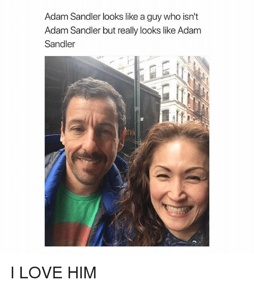 Adam Sandler, Love, and Girl Memes: Adam Sandler looks like a guy who isn't  Adam Sandler but really looks like Adam  Sandler  rVI I LOVE HIM