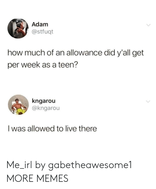 Allowance: Adam  @stfuqt  how much of an allowance did y'all get  per week as a teen?  kngarou  @kngarou  Iwas allowed to live there  > Me_irl by gabetheawesome1 MORE MEMES