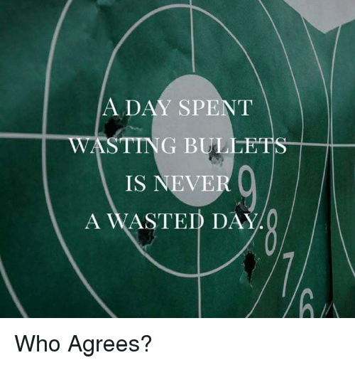 Memes, Never, and 🤖: ADAY SPENT  ST  ING BULLETS  IS NEVER  A WASTED DAY.Q Who Agrees?