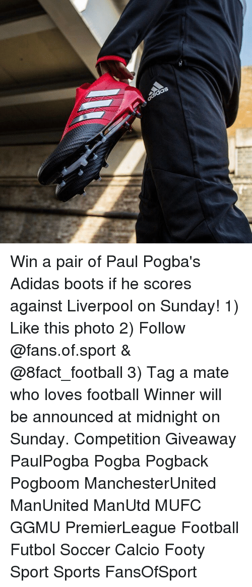 Adidas, Memes, and Soccer: adidas Win a pair of Paul Pogba's Adidas boots if he scores against Liverpool on Sunday! 1) Like this photo 2) Follow @fans.of.sport & @8fact_football 3) Tag a mate who loves football Winner will be announced at midnight on Sunday. Competition Giveaway PaulPogba Pogba Pogback Pogboom ManchesterUnited ManUnited ManUtd MUFC GGMU PremierLeague Football Futbol Soccer Calcio Footy Sport Sports FansOfSport