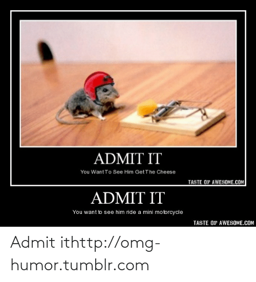 Omg, Tumblr, and Http: ADMIT IT  You Want To See Him Get The Cheese  TASTE OF AWESOME.COM  ADMIT IT  You want to see him ride a mini motorcycle  TASTE OF AWESOME.COM Admit ithttp://omg-humor.tumblr.com
