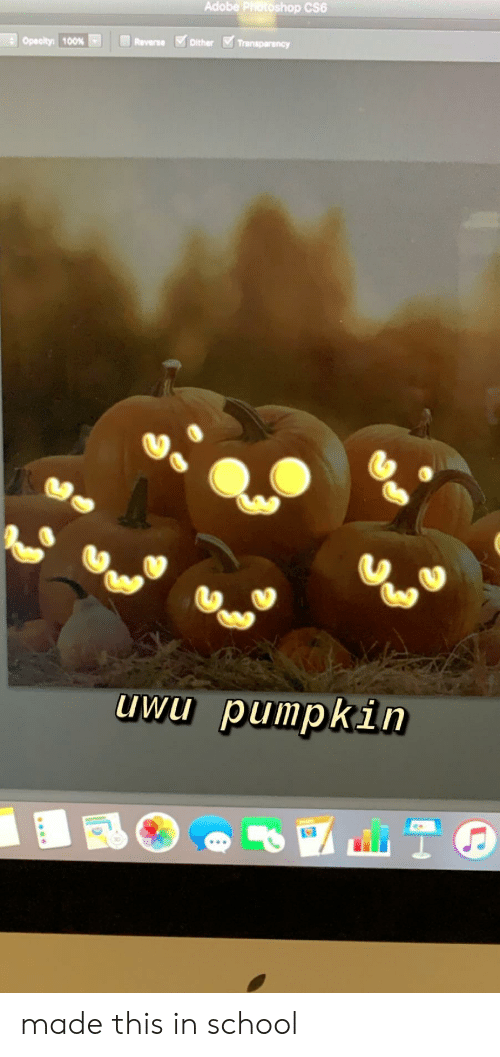 cs6: Adobe Photoshop CS6  Dither Transparency  Opecity: 100%  Reverse  uwu pumpkin made this in school