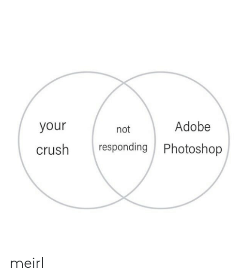 not responding: Adobe  your  not  responding Photoshop  crush meirl