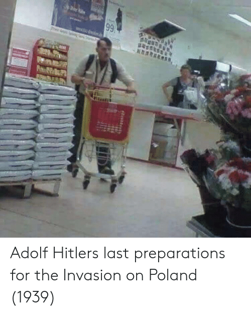 Adolf: Adolf Hitlers last preparations for the Invasion on Poland (1939)