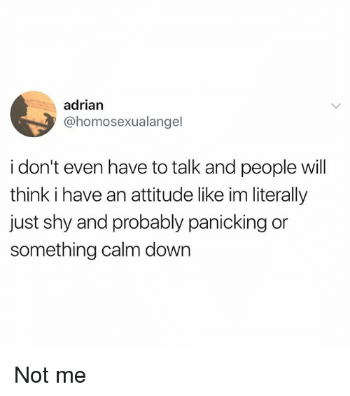 Memes, Attitude, and 🤖: adrian  @homosexualangel  i don't even have to talk and people will  think i have an attitude like im literally  just shy and probably panicking or  something calm down Not me