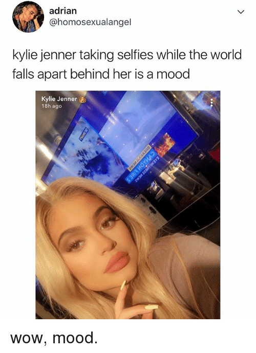 Kylie Jenner, Mood, and Wow: adrian  @homosexualangel  kylie jenner taking selfies while the world  falls apart behind her is a mood  Kylie Jenner  18h ago wow, mood.