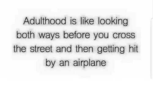 Airplane: Adulthood is like looking  both ways before you cross  the street and then getting hit  by an airplane