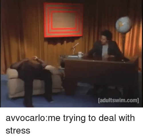 adultswim: adultswim.com] avvocarlo:me trying to deal with stress
