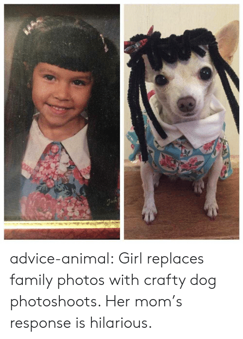 Family Photos: advice-animal:  Girl replaces family photos with crafty dog photoshoots. Her mom's response is hilarious.