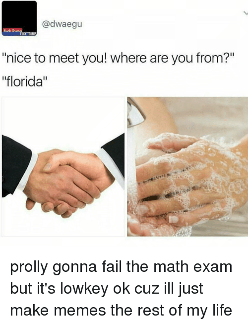 """Memes, Florida, and Math: adwaegu  Trumn  FUCK TRUMP  """"nice to meet you! where are you from?""""  """"florida"""" prolly gonna fail the math exam but it's lowkey ok cuz ill just make memes the rest of my life"""