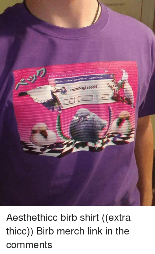Link, Shirt, and Comments: Aesthethicc birb shirt ((extra thicc)) Birb merch link in the comments