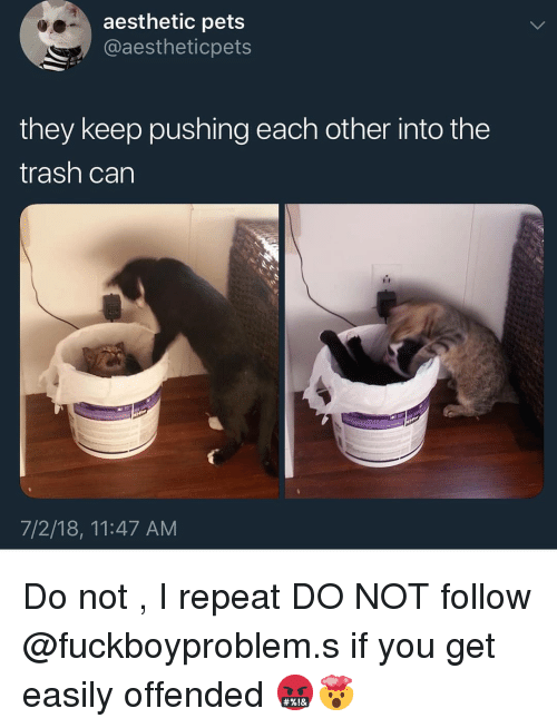 Into The Trash: aesthetic pets  @aestheticpets  they keep pushing each other into the  trash can  7/2/18, 11:47 AM Do not , I repeat DO NOT follow @fuckboyproblem.s if you get easily offended 🤬🤯