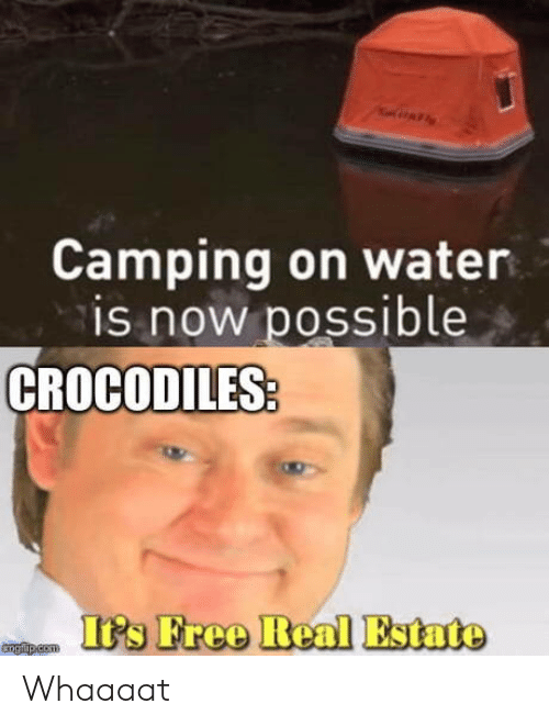 camping: AF  Camping on water  is now possible  CROCODILES  It's Free Real Estate  tngfp.com Whaaaat