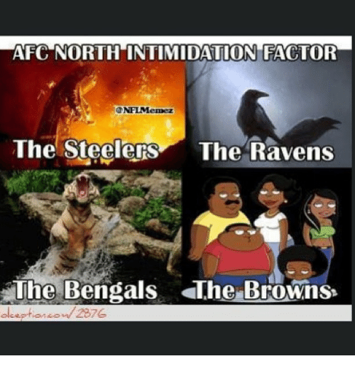 Steelers: AFC NORTH INTIMIDATION FACTOR  ONFLMemez  The Steelers  The Ravens  The Bengals The Browns  2876